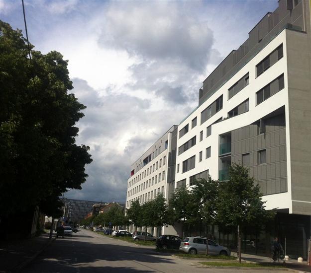 Apartmaji Robić