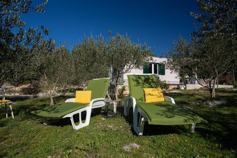 Maison Olive Eden