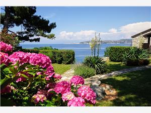 Apartments Villa Ana Monterosso Crveni Vrh, Size 60.00 m2, Airline distance to the sea 20 m