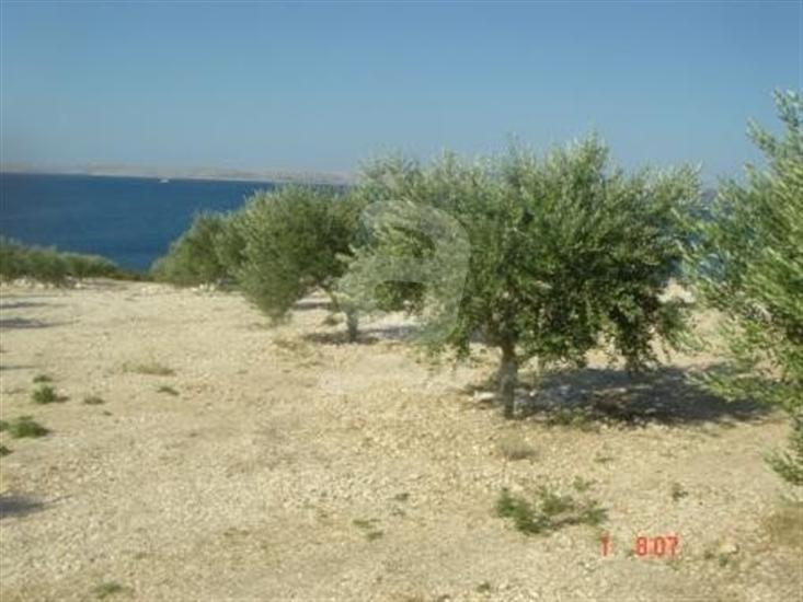 Zizanj - eiland Zizanj