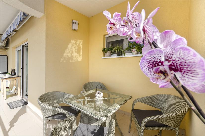 Appartamento Golden Oasis