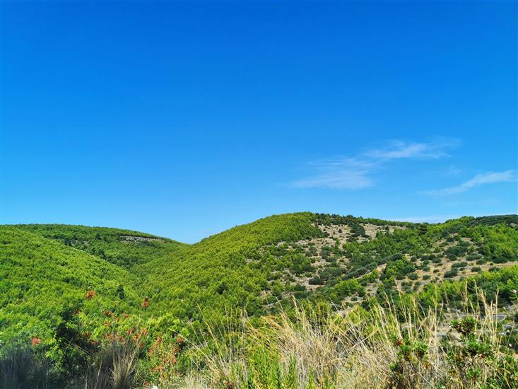 Grscica - island Korcula